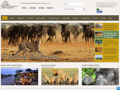 Tours and Safaris Company Website Design